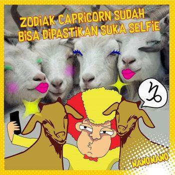 Nano Zodiak Capricorn